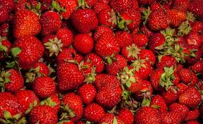 NC Strawberry Season Is Now!
